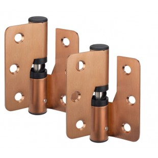Copper Stainless Steel Cubicle Gravity Hinge