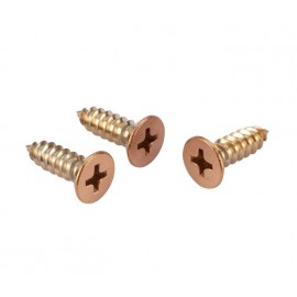Copper Wood Screws 12 Set for 20mm Partition