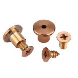 Copper Screws Toilet Cubicle Fittings for 13mm Partition
